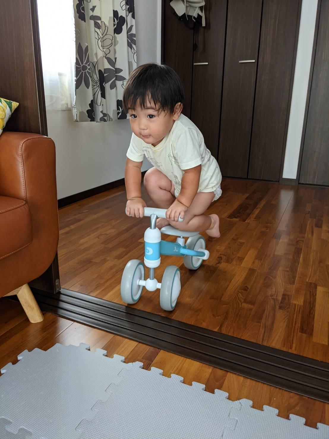 キシリトールと三輪車